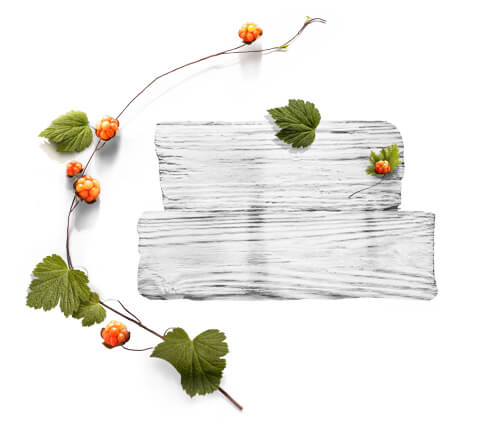 barnangen_de_swedish_inspired_ingredients_cloudberry_480x430
